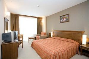 2-Craciun 2012 Bulgaria – Hotel Lion Bansko - Bansko, Bulgaria 2